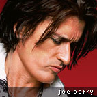 Aerosmith's Joe Perry: 'I have 600 guitars!'