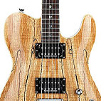 Custom Telecaster Spalted Maple HH