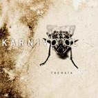 Karnivool: Themata