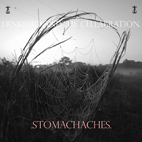 frnkiero andthe cellabration: Stomachaches