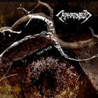 Capharnaum: Fractured
