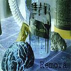 Remora: Brainwash