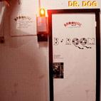 Dr. Dog: B-Room
