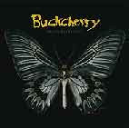 Buckcherry: Black Butterfly