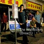 The Wallflowers: Breach