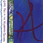 Blink-182: Flyswatter