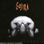 Gojira: Terra Incognita