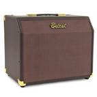 Belcat: Acoustic 25C