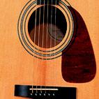 Fender: DG-14S