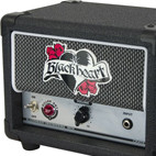 Blackheart: BH1H Killer Ant