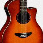 Yamaha: APX5A-12