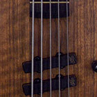 Warwick: Thumb 5-String Bass