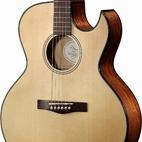 Fender: GDC-200SCE