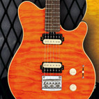 Ernie Ball / Music Man: AX20