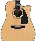 Fender: DG-10CE