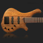 Mayones: BE 5 Exotic