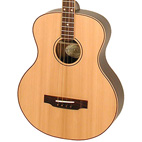 Ozark: 3372 Tenor Guitar